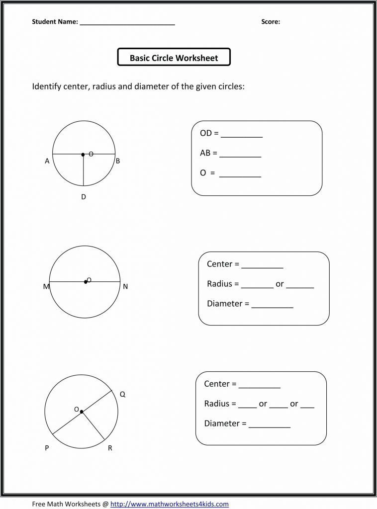 Population Ecology Graph Worksheet Answers
