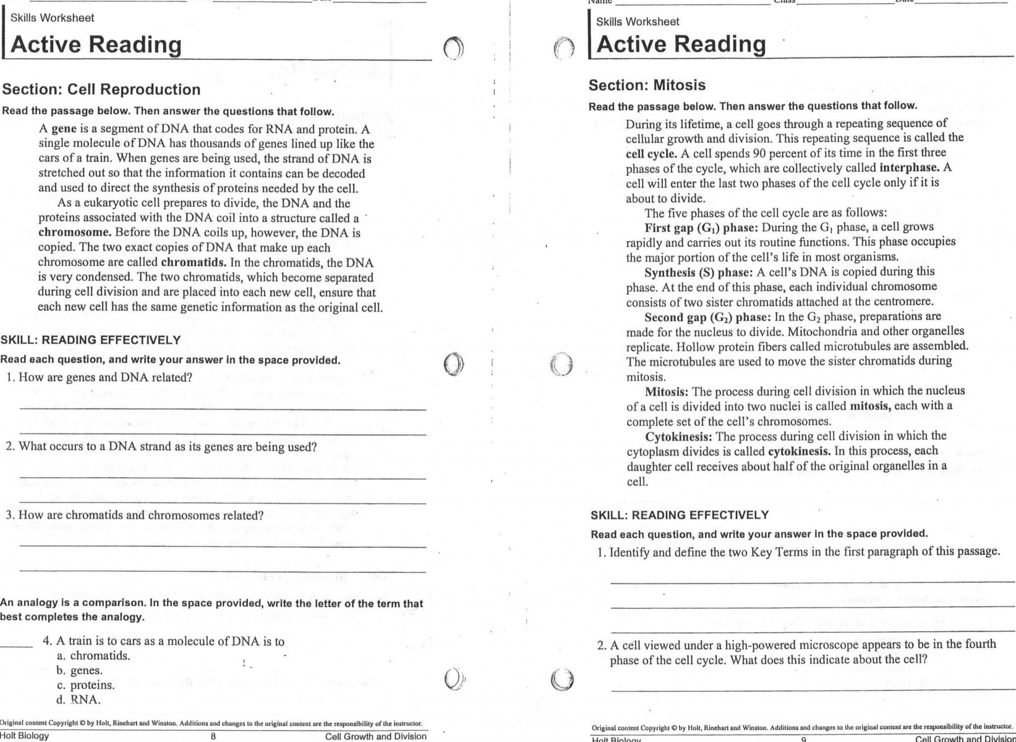 Skill Worksheet Directed Reading A