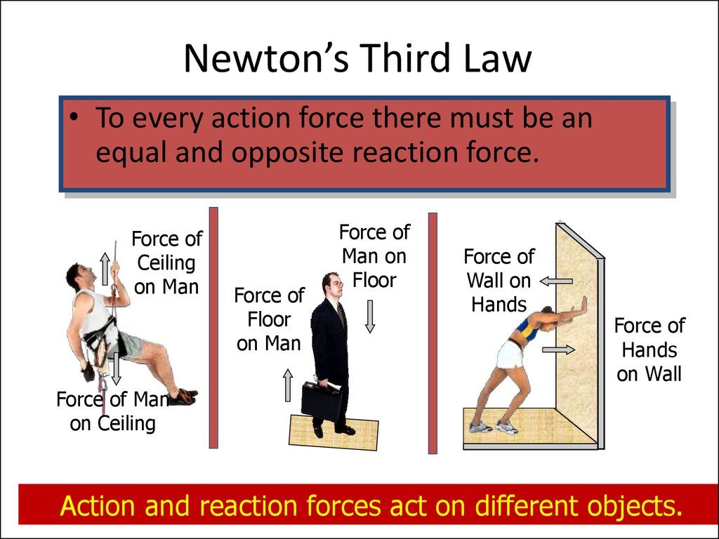 Isaac Newton S 3 Laws Of Motion Worksheet Answers