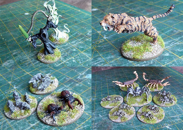 pictures of spider miniatures