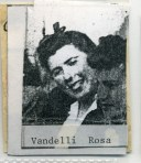 Vandelli Rosa 017