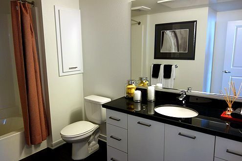 Extra spacious bathroom (required by ADA to allow for a wheelchair to be able to turn around inside)