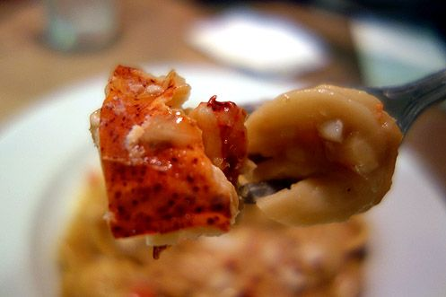 Big chunks of lobster meat