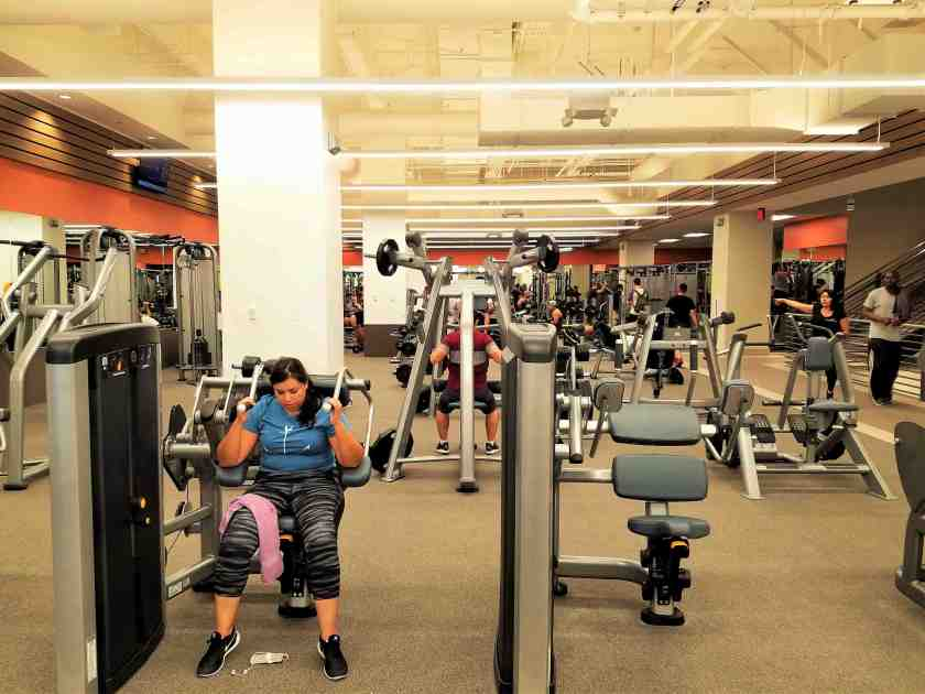The main floor is dedicated to free weights and machines