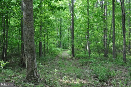 Property for sale at Enon School, Marshall,  VA 20115