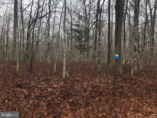 Property for sale at Poindexter, Louisa,  Virginia 23093