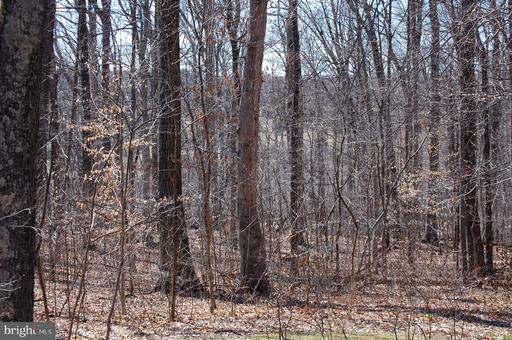 Property for sale at Spinks Ferry, Leesburg,  Virginia 20176