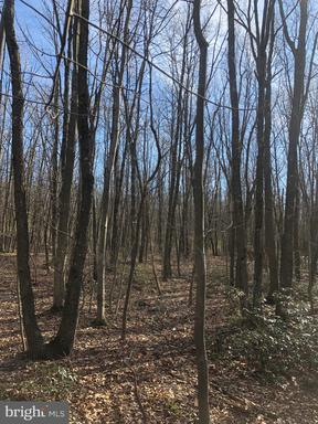 Property for sale at 0 Unknown, Saint Clair,  Pennsylvania 17970