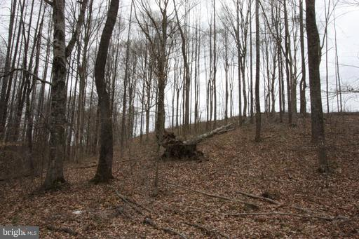 Property for sale at 0 Kennon Road, Mineral,  Virginia 23117