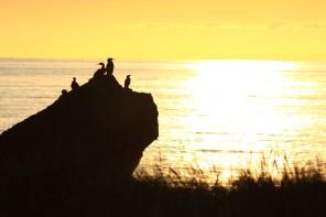 Sunset Cape Palliser