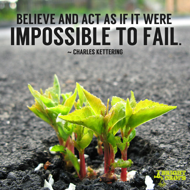 """Believe and act as if it were impossible to fail."" ~Charles Kettering"