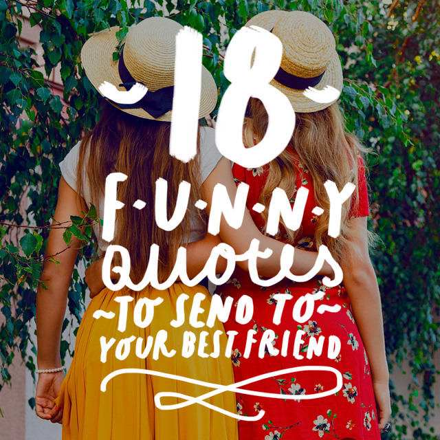18 Funny Quotes to Send to Your Best Friend   Bright Drops Your best friend will love these funny quotes  They all couldn t be more