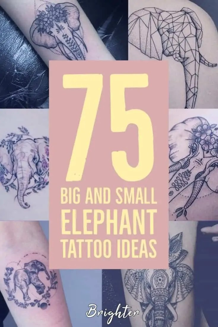 bcda6b7b7 Elephant tattoos can be beautiful – so many different shapes, sizes, and  designs. Choosing your ideal tattoo can be difficult. Having something  permanent on ...
