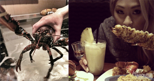 red-lobster-lobsterfest-drink