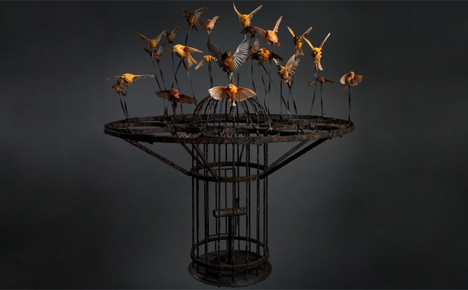 Polly Morgan, Systemic Inflammation, 2010; Taxidermy and steel; Photography by Tessa Angus - See more at: http://nmwa.org/exhibitions/organic-matters#sthash.wtSY3pWf.dpuf