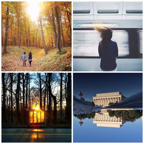 Photo © Top Left: @someguy, Top Right: @someguy, Bottom Right: @jennrightmeow, Bottom Left: @csmarcum