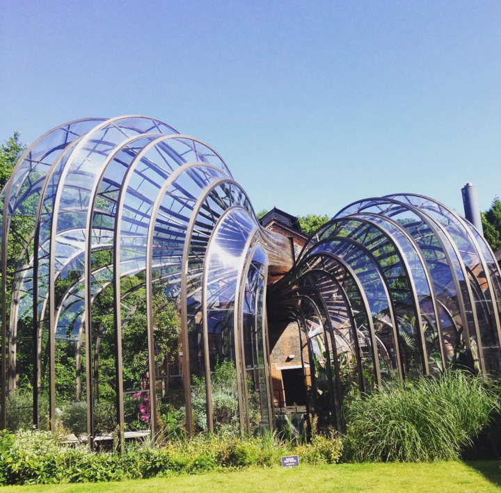 The glasshouses at the Bombay Sapphire Distillery in Hampshire