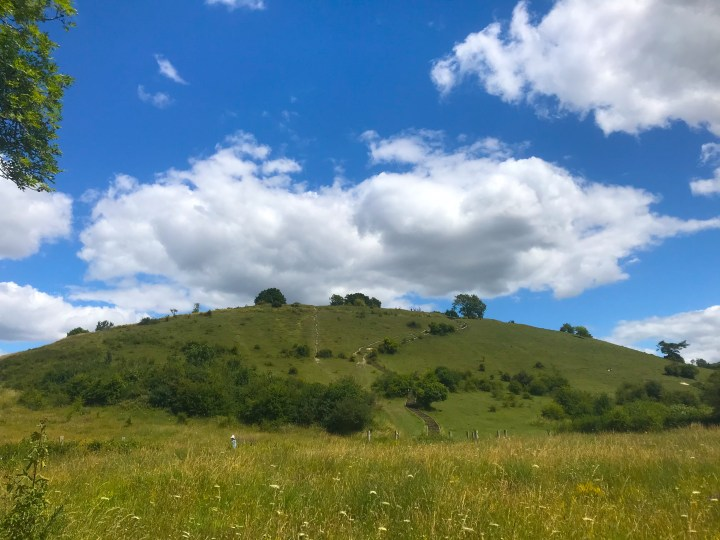 St. Catherine's Hill on the Winchester Water Meadow Walk