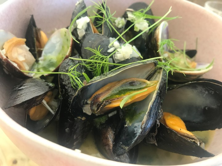 Mussels at at Prawn on the Farm, Padstow, Cornwall