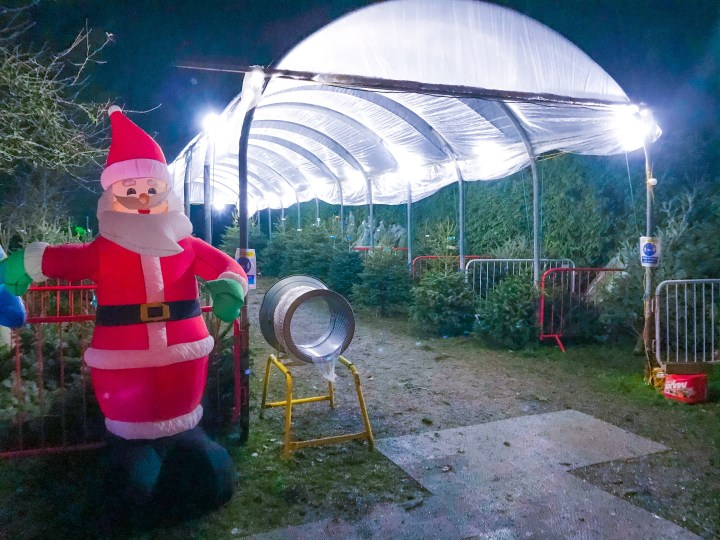 J West Christmas Tree Supplier in Titchfield, Hampshire