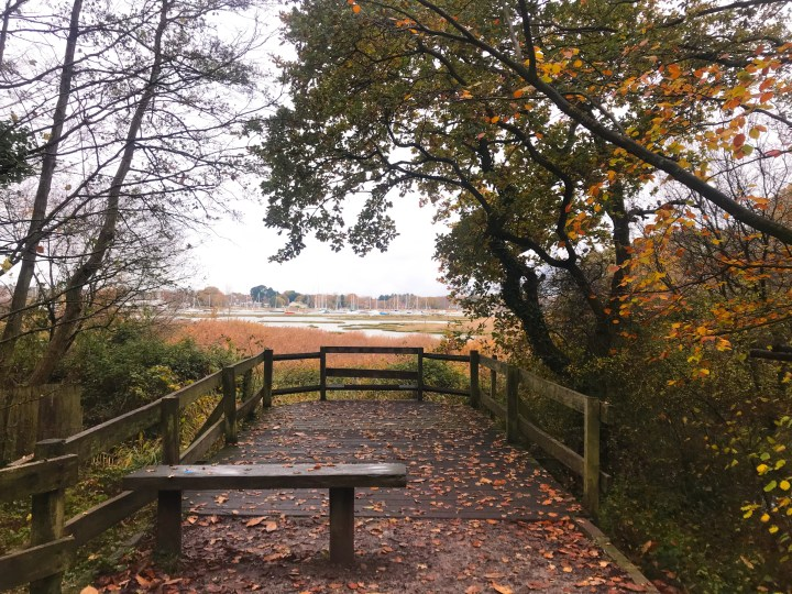 The view point across the river Hamble at Holly Hill Woodland Park in Autumn