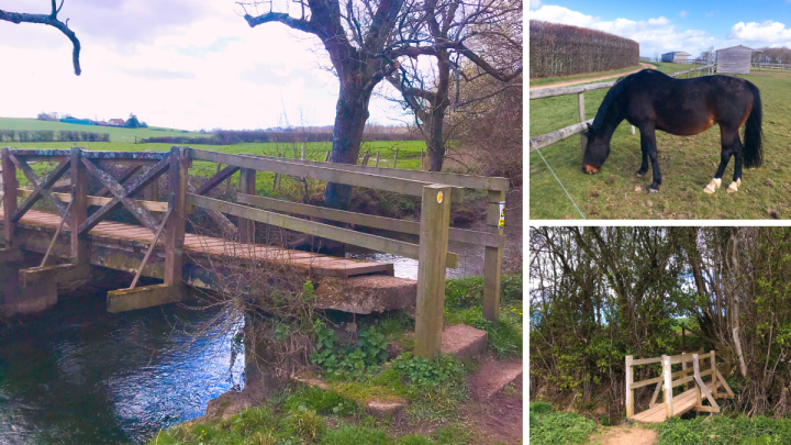 Walk the Wallington River in Fareham