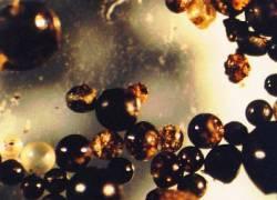 micrometeorites