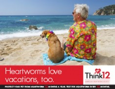 Heartworm-Love-Vacations-3-5c923d6ab3