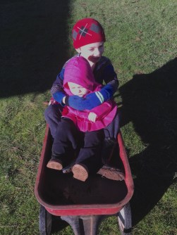 Niko was delighted that Sofia joined him in the weed-collecting wagon for a ride. She didn't last long before she was ready to go off on her own again!
