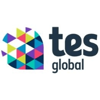 Consultant - Contractor Experience: tes global Logo