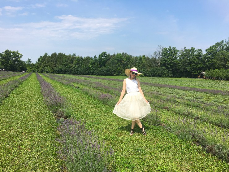 Lavender Field Outfit - White and cream outfit