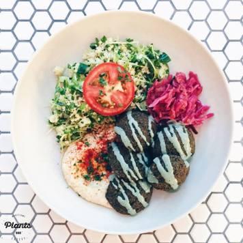 Red Lentil Falafel Plate