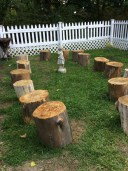 Log Stump Seating