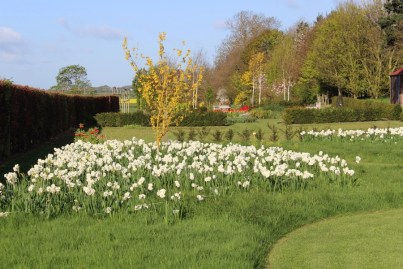 brightwater gardens april blog 3