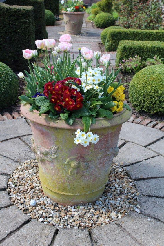 brightwater gardens april blog 9