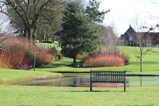 brightwater-gardens-saxby-lincolnshire-snowdrops-winter-gardens-8