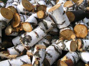 чем лучше всего топить - березовые дрова