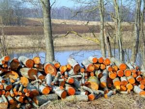 какими дровами лучше всего топить - дрова из ольхи