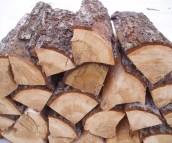 дрова из сосны для отопления