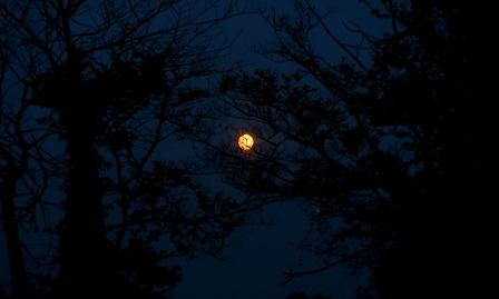 Clear Moon