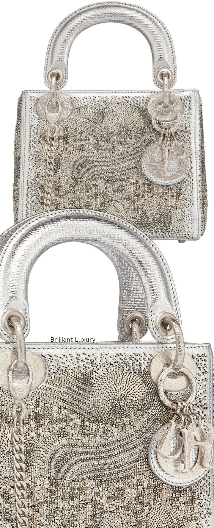 Dior Bag in silver color textured goatskin embroidered with metallized tubes-hand-hammered silver tone metal charms Designer Olga de Amaral