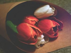Tulips_Daria Sukhorukova_web
