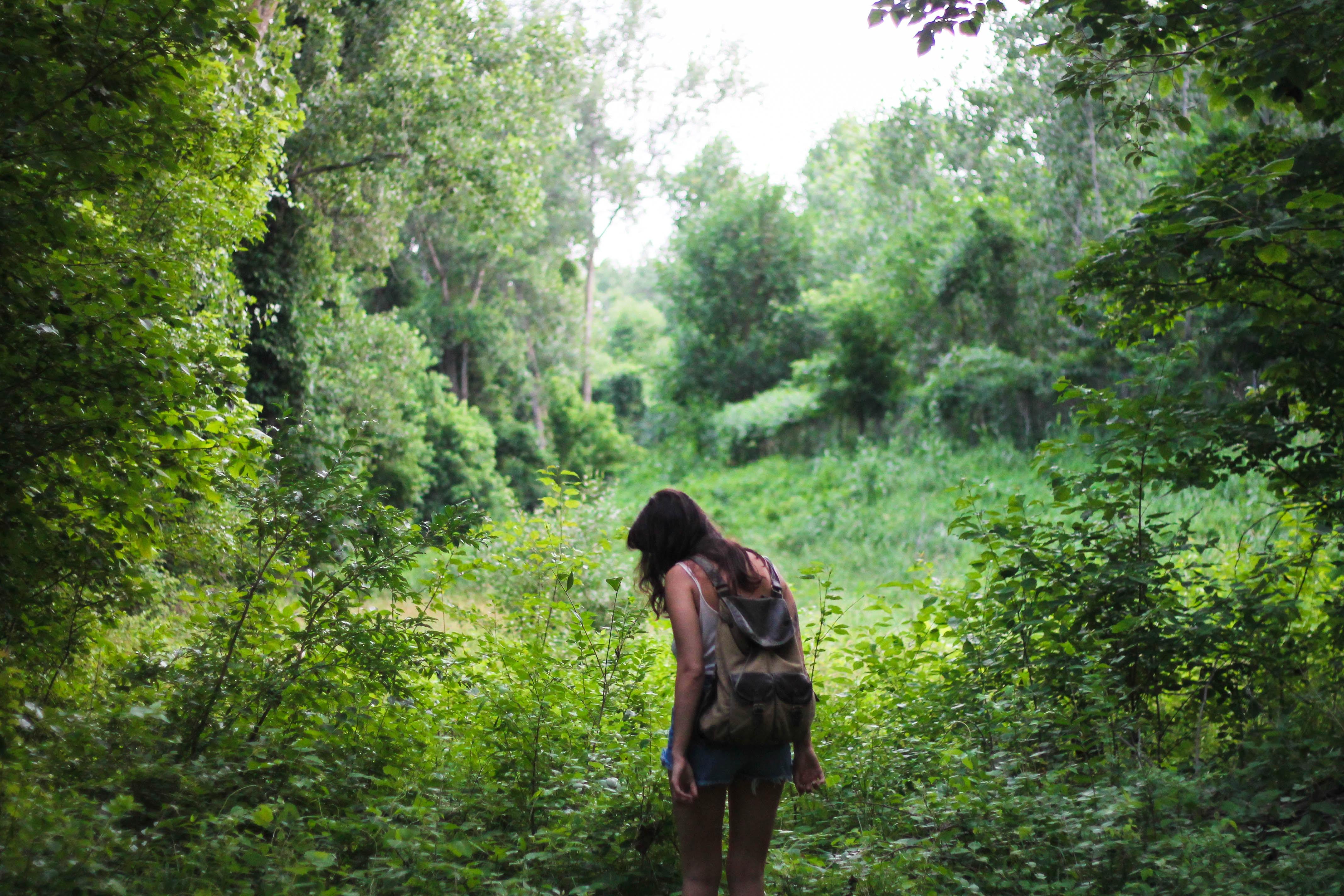 walk-in-wild_michelle-spencer-1116