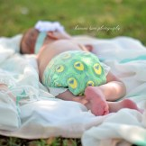 Ashlyn Newborn Session