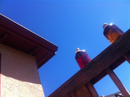 Laying on the porch, looking at the blue sky, and anticipating TEA!!!!!