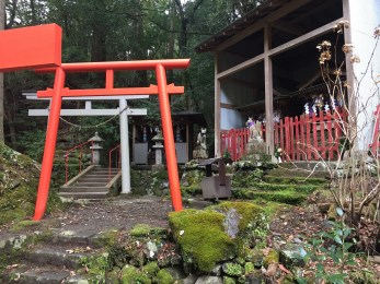 My favorite shrine (it was for fox spirits I believe) on the trail.