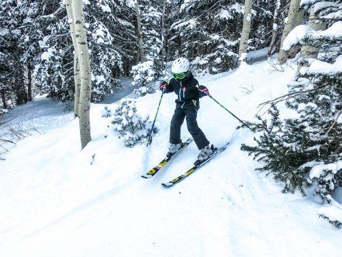 Sydney Skiing
