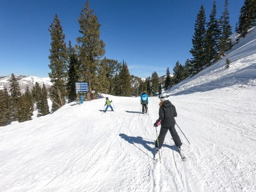 skiing down the mountain with kids