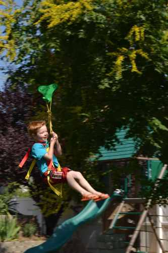 little boy on zipline