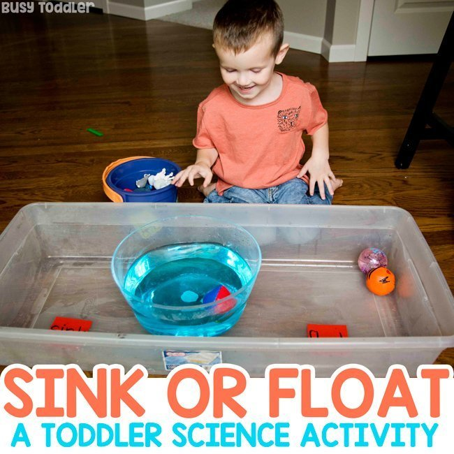 Sink or Float: Toddler Science Experiment - Busy Toddler